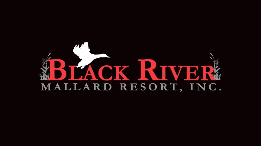 Black River Mallard